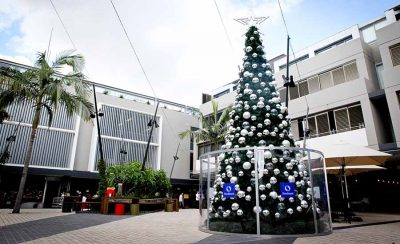 Cammeray Outdoor Commercial Christmas Tree