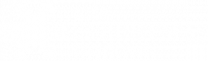 The Christmas Company Logo